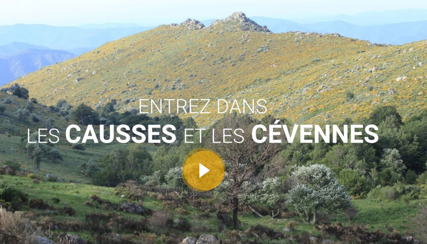 http://www.laboucleromaine.fr/wp-content/uploads/sites/6/2019/02/causses_et_cevennes_webdocumentaire.jpg